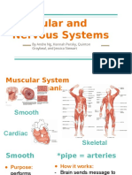 nervous and muscular systems