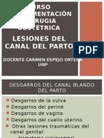 Lesiones Del Canal Del Parto