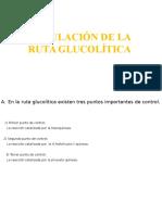 Regulación de La Ruta Glucolítica