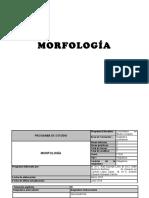 Morfo - PlanEst1 Mc