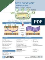 Antibiotics Simplified Pdf