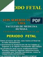 9. Periodo Fetal
