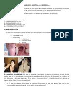 anestesio 2