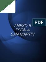 Escala San Martin 2014