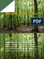 Sabirnica Racunala-Horvat i Votuc