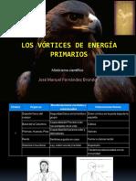 Los Vórtices Primarios de Energía