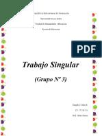 Trabajo Singular Estetica Grupo 3 Tinaydi Niño