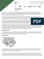 Understanding the Stress Response - Harvard Health
