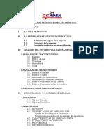 Indice Plan de Negocios de Exportacion 20081