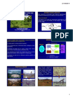 Sistema Agroflorestal Sistemas Agroflorestais