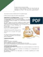 Psiquiatria Glutamato, GABA, Glicina PDF