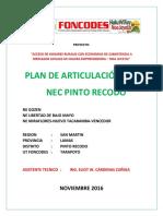 Plan Articulacion Nec Pinto Recodo