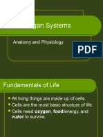 Animalorgansystems 111128150618 Phpapp01 (1)