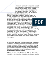 The Economy of Assam