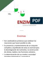 2° tema Bq.2- ENZIMAS.pdf