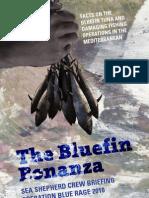 Blue Rage in Mediterranean