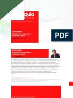 Redarquía-Organizaciones-Duales