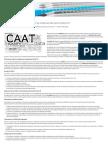 Uso de herramientas CAAT´S en las revisiones de control interno IT - Auditoría & Co