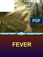 slides of fever 3.ppt