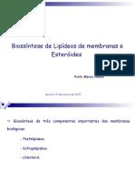 Metabolismo Lipideos II