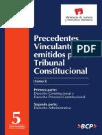 Precedentes Vinculantes Emitidos Por El Tribunal Constituciona, Tomo I