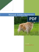 Perro - Golden Retriever