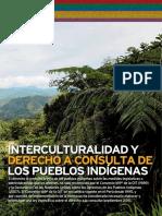 Interculturalidad y Derecho a Consulta Pueblos Indigenas