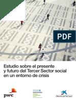 Estudio Sobre El Presente,y Futuro Del Tercer Sector Social en Un Entorno de Crisis
