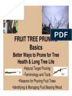 Fruit Tree Pruning Basics.pdf