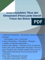 Presentasi Kutu Dan Pinjal
