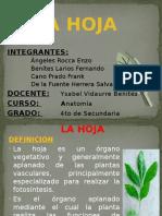 lahoja-120416174945-phpapp01