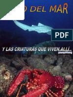 Criaturas Del Mar-8804
