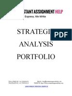 Sample Document on Strategic Analysis Portfolio