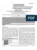 Isolation, Biochemical Characterization and Production of Biofertilizer from Bacillus megaterium
