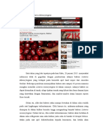 Topik Apel Yang Tercemar Bakteri