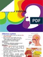 Olfactory system.pptx