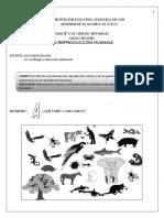 guc3ada-nc2b0-1-la-reproduccic3b3n-humana.pdf