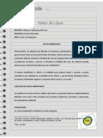 Nota de Clase 14 Costos Ambientales 2016