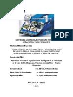 Expediente_Tecnico_Construccion_de_Cobertizo.docx