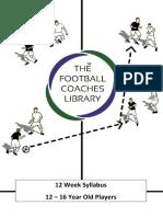 tfcl_12_to_16_yo_syllabus.pdf