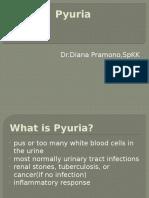 Pyuria.pptx