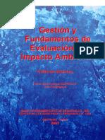 Evaluacionimpactoambienta1.pdf