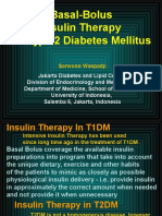 Basal Bolus InsulinDMT22009