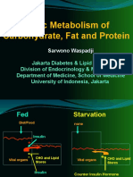 Basic Metabolism Per Ho Mped in 2013