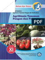 Agribisnis Tanaman Pangan Dan Palawija
