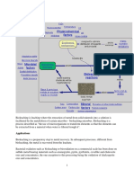 Bioleaching.pdf