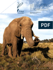 ANIMAL WHISPERER.pdf