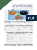 Fertigasi Medium Tanaman