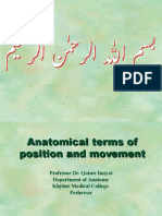 Anatomical Terms 2016