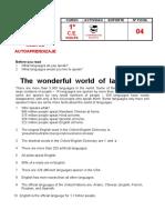 The wonderfull world of languages.pdf